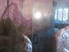 euro-style-shower-door-5